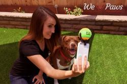 This Tennis Ball Smartphone Attachment Will Forever Change How You Take A Picture With Your Paw